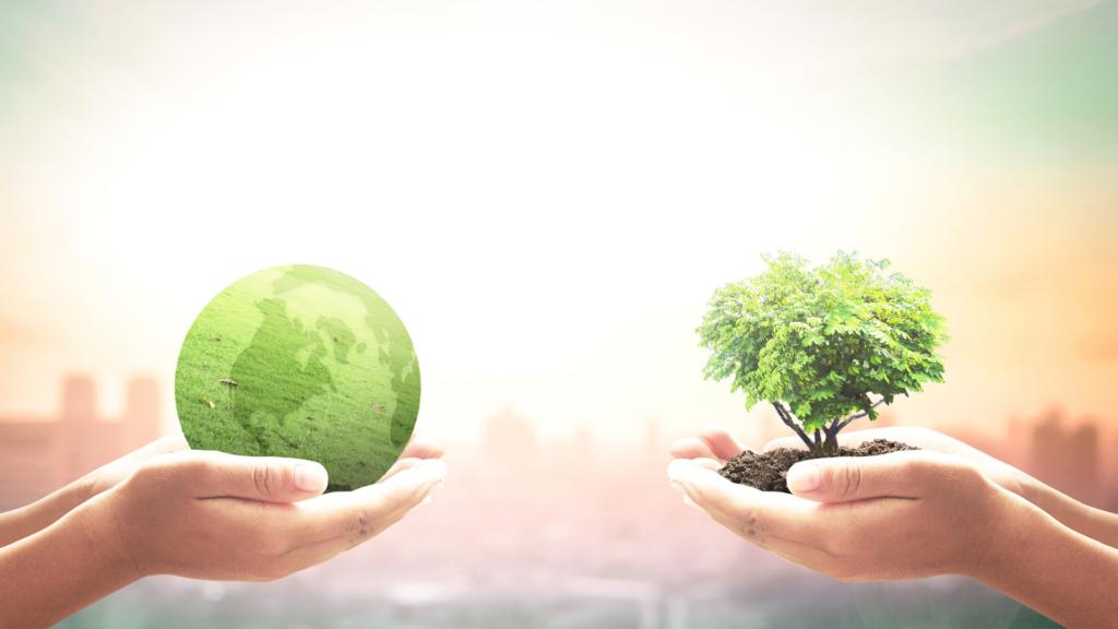 economia-civile-sviluppo-sostenibile-la-sostenibilità-secondo-Sustenia-Green-Agenzia-Milano