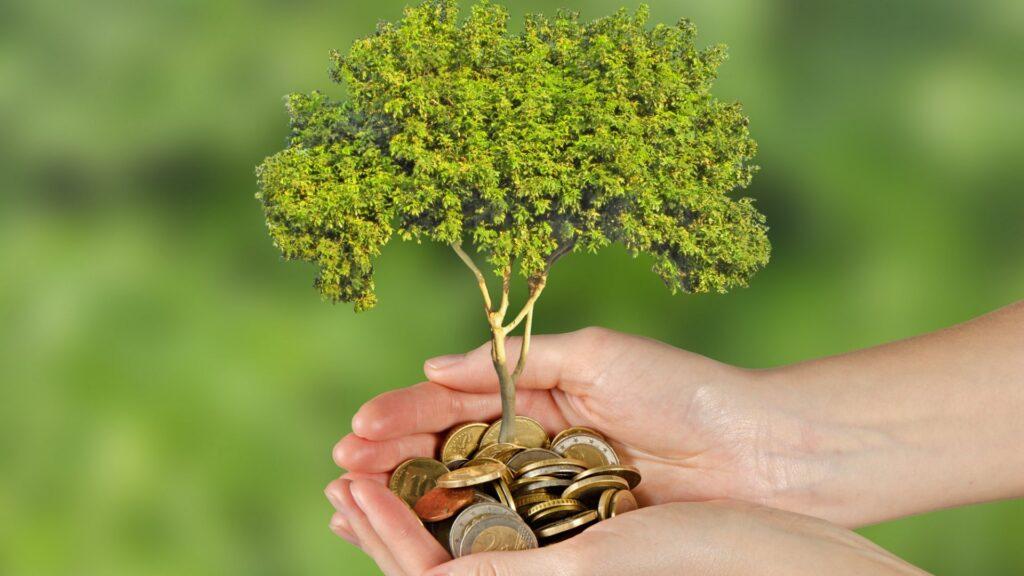 green-economy-italia-green-economy-esempi-sviluppo-sostenibile-marketing-Sustenia-Green