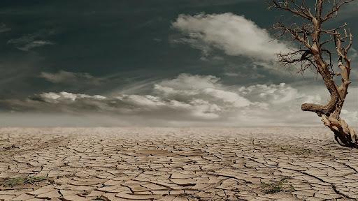 crisi-climatica-e-ambientale-sustenia-pillole-di-sostenibilità