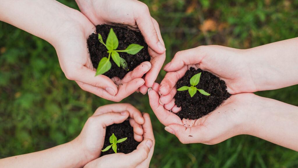educazione-ambientale-scuola-bambini-sostenibilità-piani-di-sviluppo-sostenibile-Sustenia