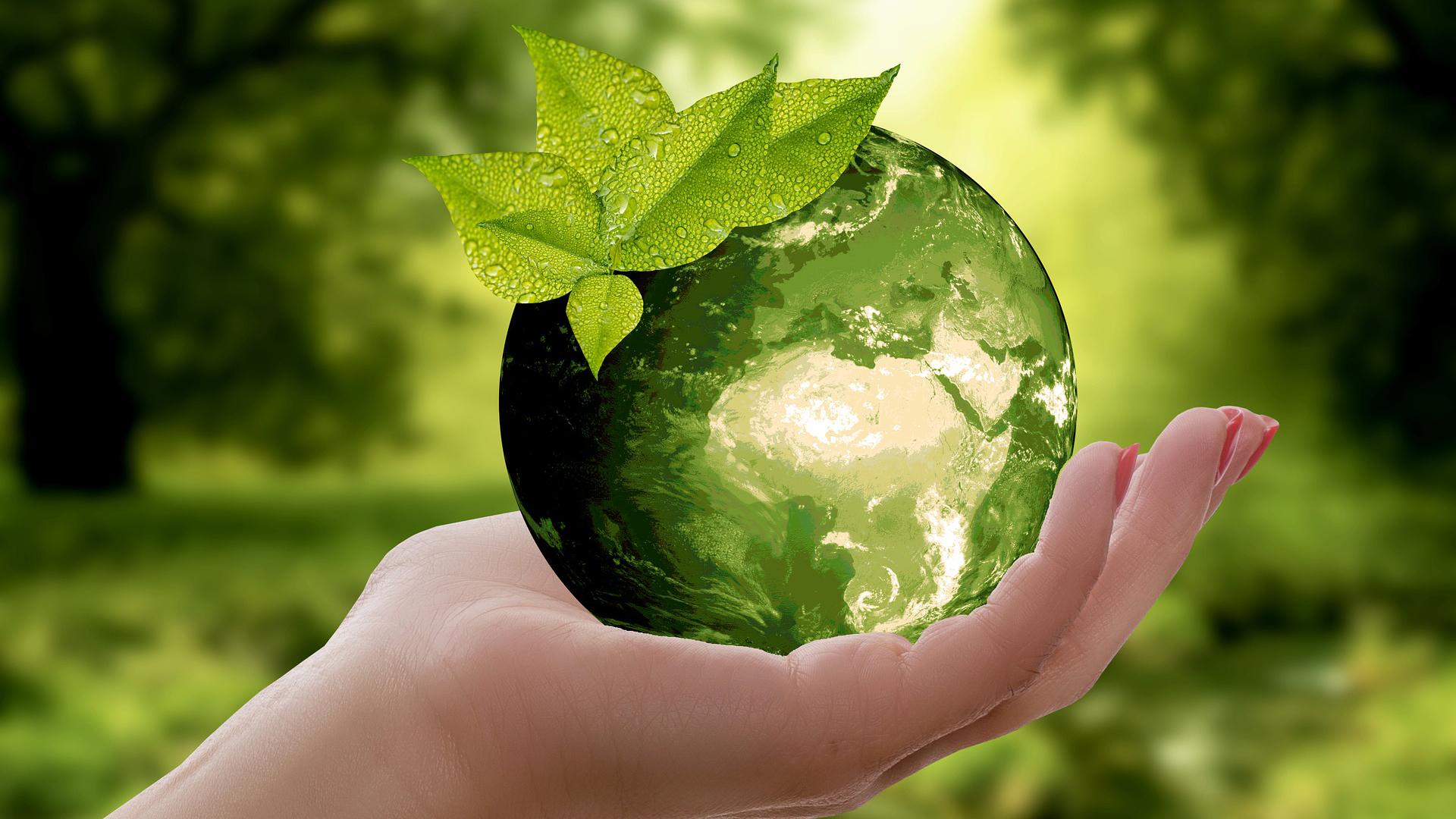 piani-politiche-di-sviluppo-sostenibile-pillole-di-sostenibilità-sustenia