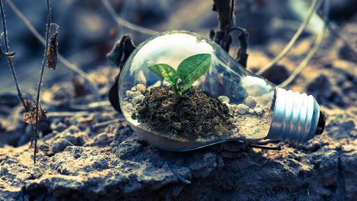 Green-economy-e-sviluppo-sostenibile-moda-agricoltura-pillole-di-sostenibilita-sustenia